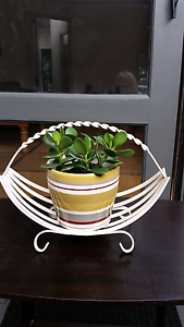 Vintage  stand with succulent plant. Williamstown Hobsons Bay Area Preview