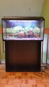 Aquarium 29 Gallons avec meuble et accessoires