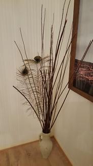 Freedom Terracotta Cream Distressed Vase & Sticks/Peacock Feather