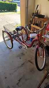 Adult tricycle Burleigh Heads Gold Coast South Preview