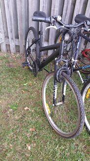 Mountain bike  Merrimac Gold Coast City Preview