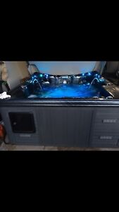 Dynasty spa with stereo system $4500 obo