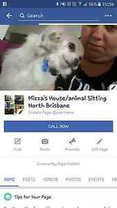 Mizza's House/Animal Sitting Bray Park Pine Rivers Area Preview