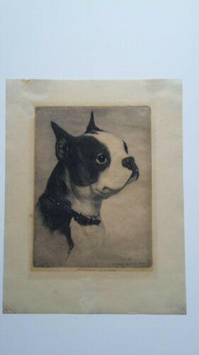 Morgan Dennis Original Signed Etching Young Boxer