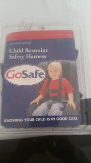 Car seats harness