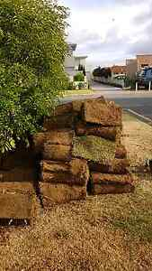 Lawn for sale. North Perth Vincent Area Preview