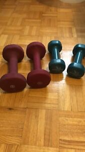 5lb and 8lb weights