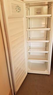 Upright 208Lt Freezer