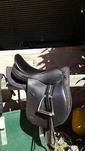 Balance Saddle Albany Albany Area Preview