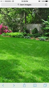 You Grow I'll Mow. Lawn and Garden Care