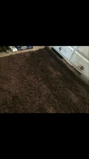 Ultra shaggy rug retail $600