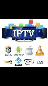 12 months iptv subscription only 60$