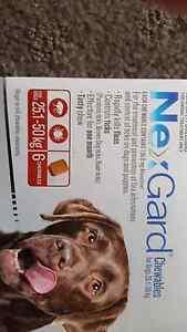 NexGard 25 to 50kg Large Dog Narellan Vale Camden Area Preview