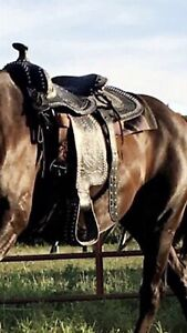 Black western saddle  for sale