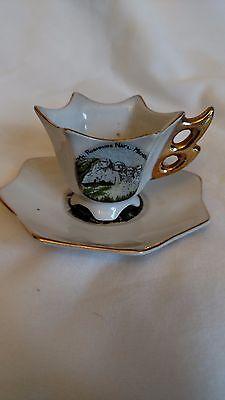 Exco Mount Rushmore Souvenir Tiny Cup & Saucer Gold Trim