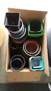 Free Plastic Pots Augustine Heights Ipswich City Preview
