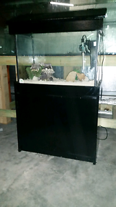 2ft Dalbarb Fish Tank Aquarium w/ Stand and Hood Wyee Lake Macquarie Area Preview