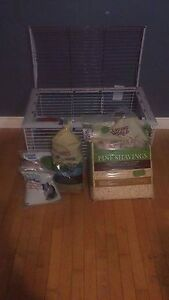 Guinea pig cage, food, accessories