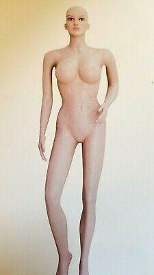 Female Plastic Sexy Mannequinmetal Standfull Body Realistic Manikin-f212wigs