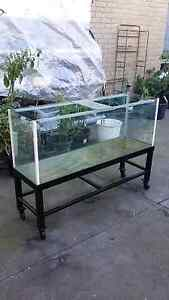 Big fish tank on metal frame (on wheels) Chelsea Kingston Area Preview