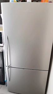 Fisher and paykel fridge 519L Maroubra Eastern Suburbs Preview