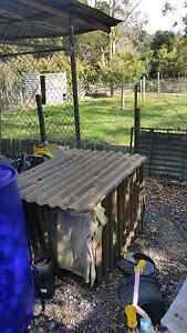 Medium-sized dog kennel Tarleton Latrobe Area Preview
