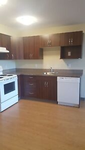 1 Bedroom Apartment Available Now