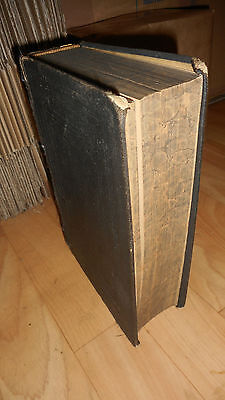 Biblia 1896-Die Bibel Luther-Die Heilige Schrift-Theologie-Central Bibel Verein