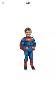 Toddler Superman Muscle Costume (Superman Muscle Chest Costume with Cape Toddler 3T-4T Free)