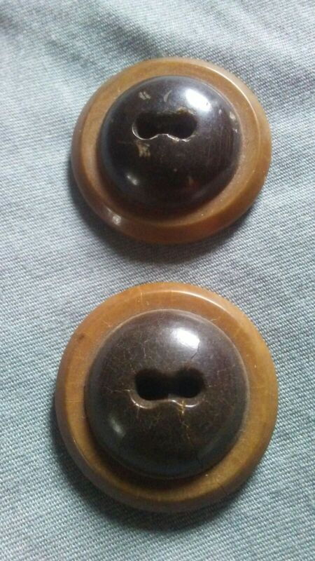 Two Tone Brown Vintage Vegetable Ivory Buttons.