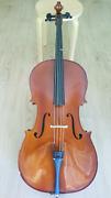 Cello 3/4 size Brisbane City Brisbane North West Preview