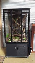 large frog, reptile tank/enclosure with underneath storage Holsworthy Campbelltown Area Preview