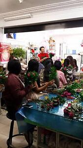 Admire Florist business for sale Bexley North Rockdale Area Preview