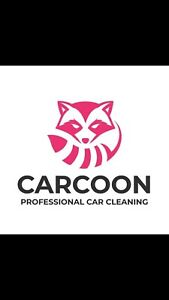 Professional car detailing and cleaning
