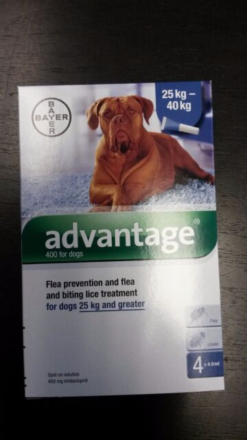 Advantage Blue For Dogs 4 Pack Over 55 lb