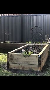 GARDEN BEDS & PLANTERS TO YOU 🥦🌽🥕🥑