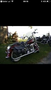 2009 Harley Softail Deluxe