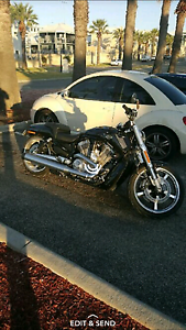 Harley davidson vrod muscle Clarkson Wanneroo Area Preview