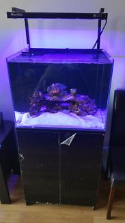 Marine Aquarium Tank