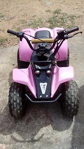 Zuma mini quad bike Bega Bega Valley Preview