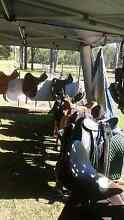 Horse gear sale North Maclean Logan Area Preview