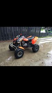 DS 650 baja in great shape ! Hardly used