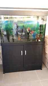 3ft fish tank including stand and pump Albion Park Shellharbour Area Preview