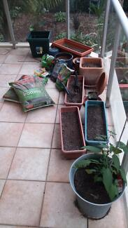 Functioning Worm Farm, Potting Mix, Full Balcony Garden set up Crows Nest North Sydney Area Preview