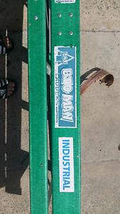 Big boy ladder Marsden Logan Area Preview
