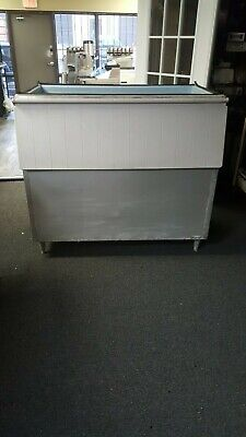 Ice Storage Bin With Over 500 Lbs Capacity