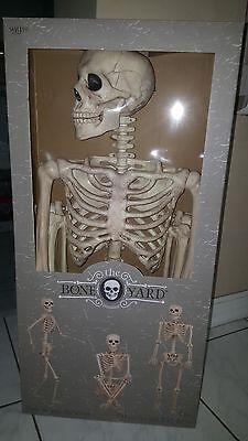The Bone Yard  5 ft (60 inch) Pose-N-Stay Skeleton Halloween Prop ~ NIB - 5ft Skeleton
