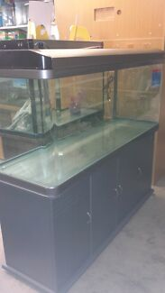 Aquarium & Cabinet Priced to Clear Wattle Grove Kalamunda Area Preview