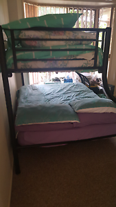 Double bunk bed Forest Lake Brisbane South West Preview