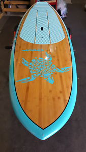 10ft Stand Up Paddle Board SUP by alleydesigns